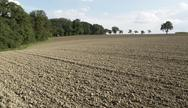 Stock Photo of pictoral plowed field and trees