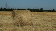 Stock Video Footage of Wheat Field Harvest, Bale of Wheat Straw, Cereal Ballot in Summer Season