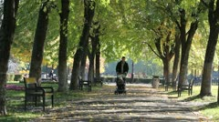 Father with baby cart walking on the park alley between autumn trees - stock footage