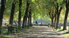 Autumn park alley and a father with a baby in a baby cart Stock Footage