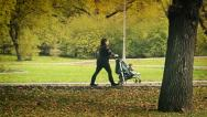 Stock Video Footage of Mother With Baby Pram in Park