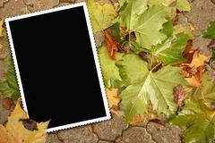 empty picture on the floor in autumn - stock photo