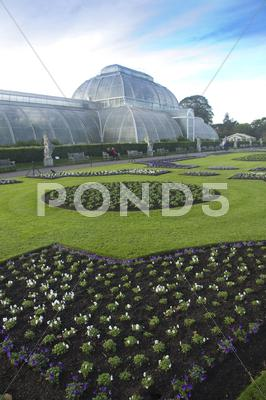 Stock photo of Kew Palm House