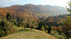 Autumn hills with colorful trees Stock Footage