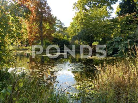 Stock photo of Kew in the autumn