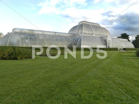 Stock photo of Greenhouse at Kew gardens