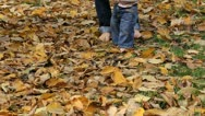Baby feet and mother feet walking on autumn leaf ground Stock Footage