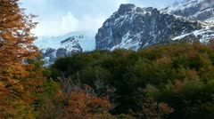 Timelapse of colorful forest in Patagonia during autumn Stock Footage