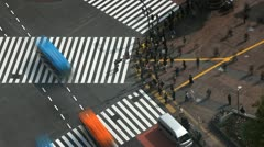 Tokyo Zebra Crossing Morning Commuters Busy Street People Crowd Walk Time Lapse Stock Footage