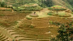 Village and terraced rice field - tilt up Stock Footage