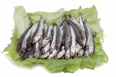 anchovies over lettuce leaves. - stock photo