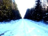 Winter Forest Road 2.JPG Stock Photos