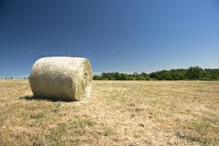Stock Photo of rural landscape