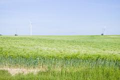wind turbines at the field - stock photo