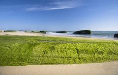 Stock Photo of sea coast near bordeaux