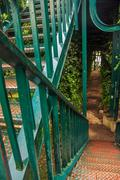 Green Leafy Tunnel - stock photo