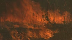 Bushfire - stock footage