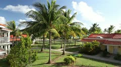 Leaves of the coconut trees waving in the wind on the territory of the hotel Stock Footage