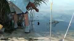Placing a fish in to keep net Stock Footage