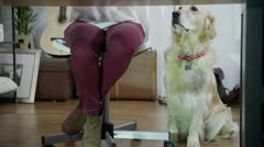 Woman working at home with her dog beside her Stock Footage