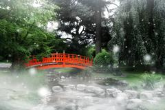 red bridge in a japanese garden - stock photo