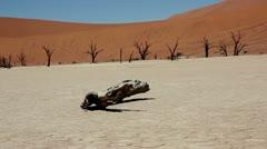 Dead vlei namibia Stock Footage