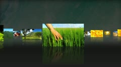 3D Montage images of natural environmental events - stock footage