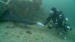 Diver & conger eel 1 Stock Footage