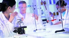 Laboratory Technicians Checking Research Results Stock Footage