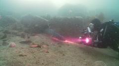 Diver phots conger eel Stock Footage