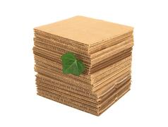 Stock Photo of Green leaf and pile of cardboard