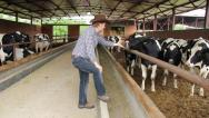 Farmer takes care of his cows Stock Footage
