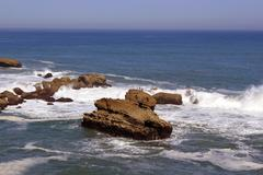 wild coast - stock photo