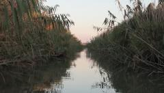 Sunset trip in narrow water channel from Danube Delta Stock Footage