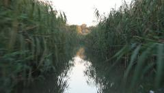 Spectacular Danube Delta, very narrow water channel Stock Footage