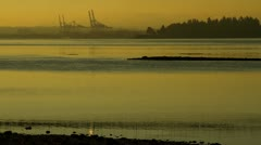 Misty Morning of  Downtown Vancouver, BC, Canada Stock Footage
