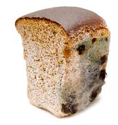 Mouldy bread Stock Photos