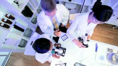 Laboratory Assistants Checking Specimen Slides - stock footage