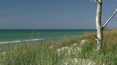 Beautiful Baltic Sea Beach on Darss Peninsula - Baltic Sea, Northern Germany Stock Footage