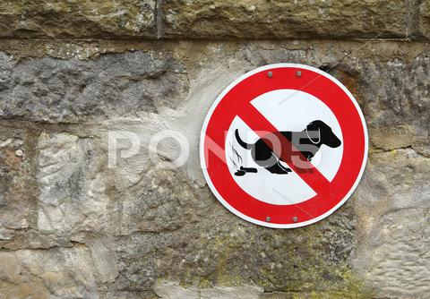 Stock photo of dog shit sign