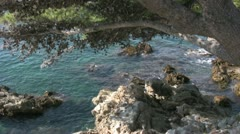 Croatia nature scene rocky bay with overhanging tree Stock Footage
