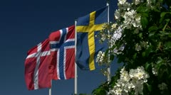 Flags of Denmark Norway Sweden and Finland - Baltic Sea, Germany Stock Footage