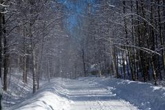 Lunta puista Kuvituskuvat