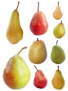 varieties of pears - stock photo