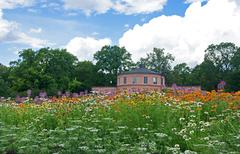 Meadow in a botanical garden - stock photo