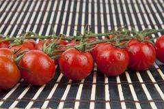 fresh cherry tomatoes on the branch - stock photo