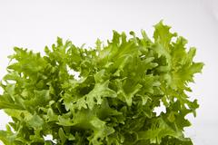 fresh green salad on white - stock photo