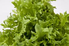 Stock Photo of fresh green salad on white