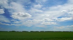 Clouds float above the green field. Stock Footage