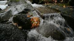 Small Stream Autumn 01 Stock Footage